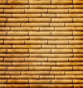 dry bamboo background stock photo