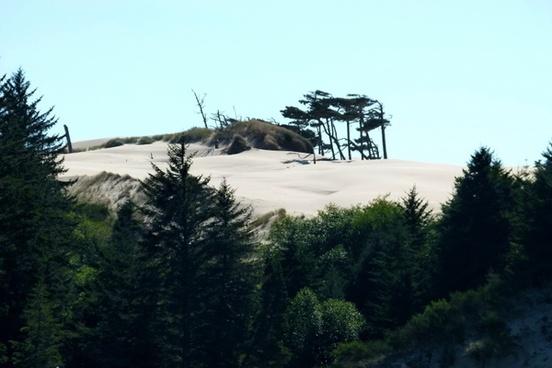 dunes national park oregon usa