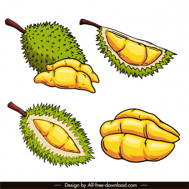 durian icons classic design handdrawn sketch