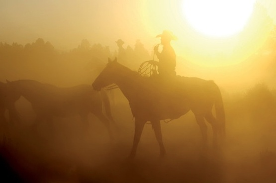 dusk cowboy hd picture