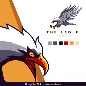eagle advertising background colorful flat dynamic sketch