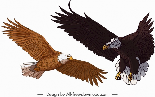 eagle icons colored cartoon sketch flying gesture