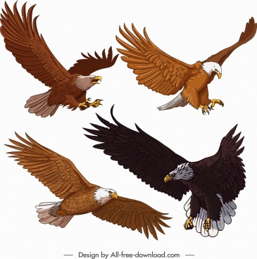 eagle icons flying gesture cartoon sketch