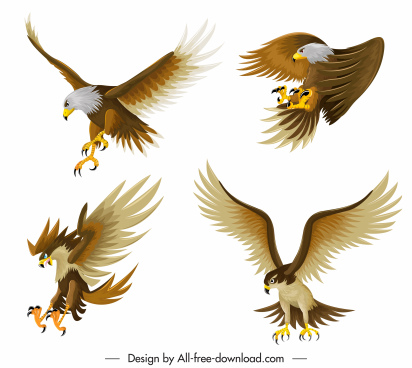 eagle icons hunting gestures sketch colored cartoon design