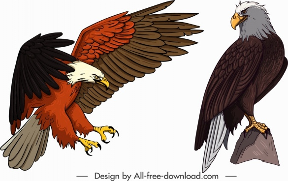 eagle icons hunting perching gesture sketch cartoon design