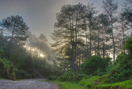early morning sagada hdr