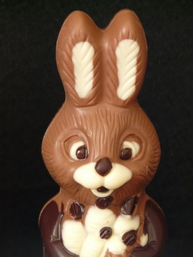 easter bunny easter chocolate