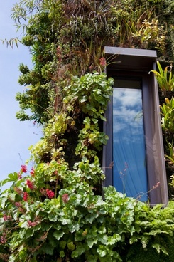 eco window