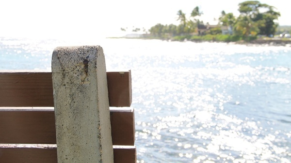edge of bench by ocean