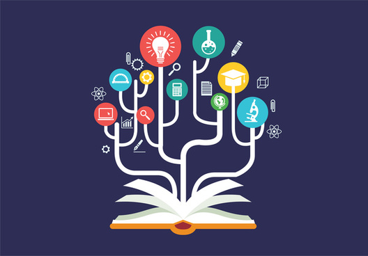 education processes infographic with open book design