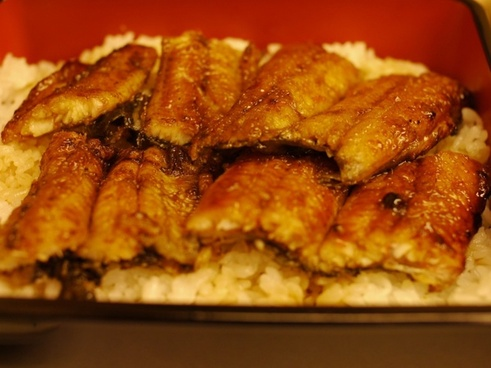 eel broiled eel food