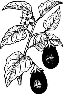 Eggplant clip art