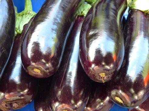 eggplant dark vegetables
