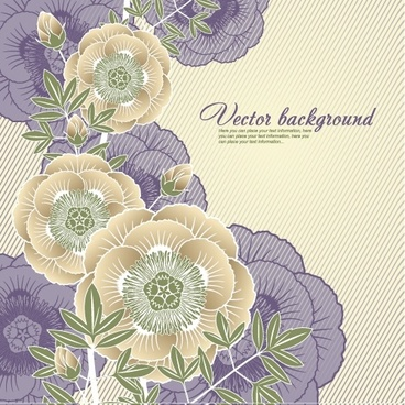 elegant floral background 05 vector