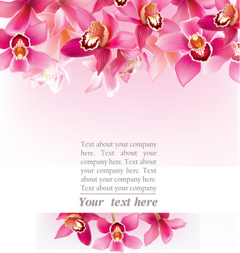 elegant orchids vector background art