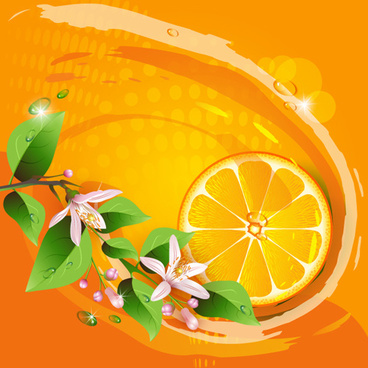 Elements of lemon and flowers vector
