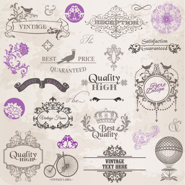 elements of ornate pattern and borders vector
