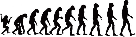 elements of process of human evolution vector