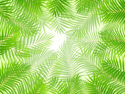 elements of tropical scenery background vector