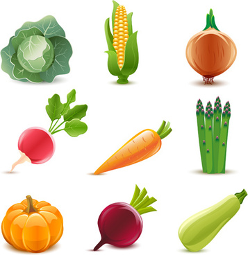 elements of various glossy fruit vector