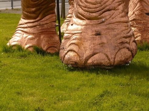elephant foot ten foot