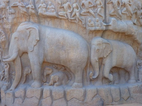 elephant relief descent of the ganga