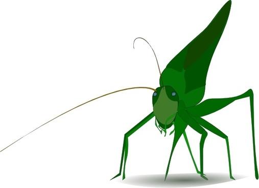 Emeza Grasshopper clip art