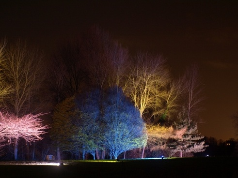 england great britain syon park enchanted woodland