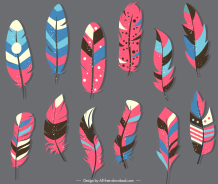 ethnic feathers icons colorful classic soft design
