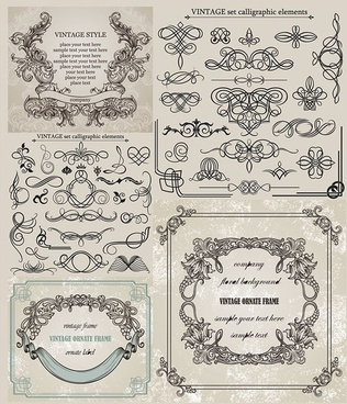 european classic lace pattern vector