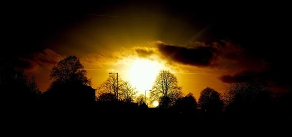 evening nature sunset
