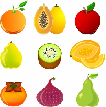 Exotic fruit icon set