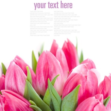 exquisite fresh flowers background 01 highdefinition picture