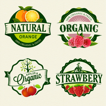 exquisite fruit labels retro style vector