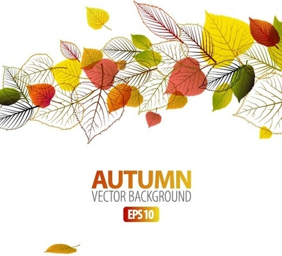 exquisite leaf background 04 vector