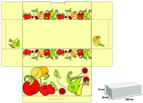 exquisite of pattern box design vector