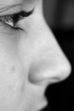 eye profile nose