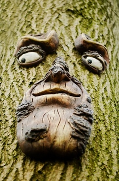 face on the tree