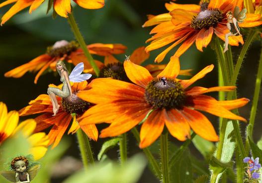 fairies among flowers