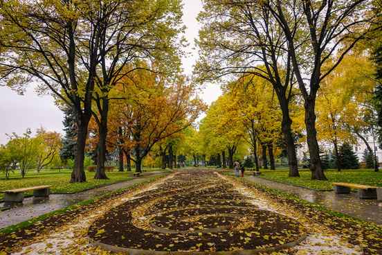 fall foliage in moscow