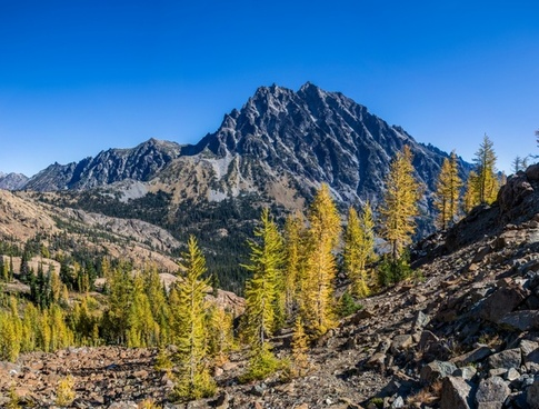 fall forest hiking landscape mountain nature nobody