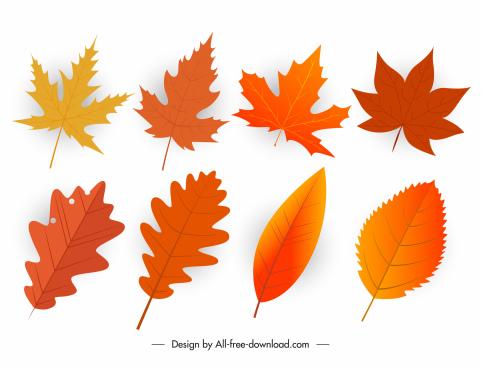 fall leaves icons orange modern shapes