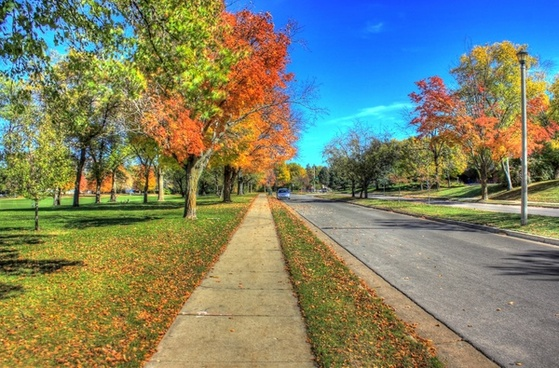 fall roadways in madison wisconsin