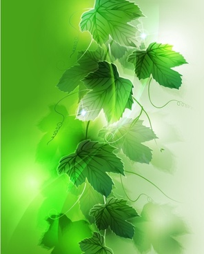 nature background realistic sparkling green leaves decor