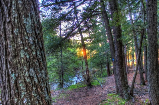 far view of sunset between trees at porcupine mountains state park michigan