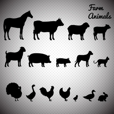 farm animals icons illustration with silhouettes style