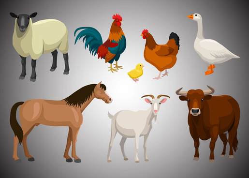 farm animals vintage set vector illustrations