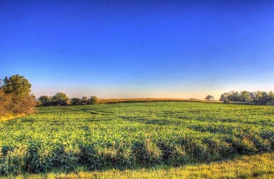 farm at dusk at charles mound illinois