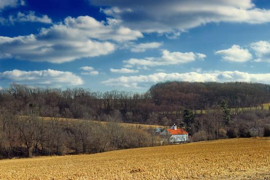 farm fields 1