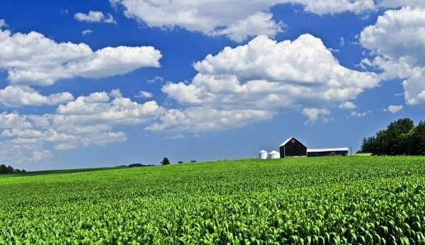 farm scenery hd picture